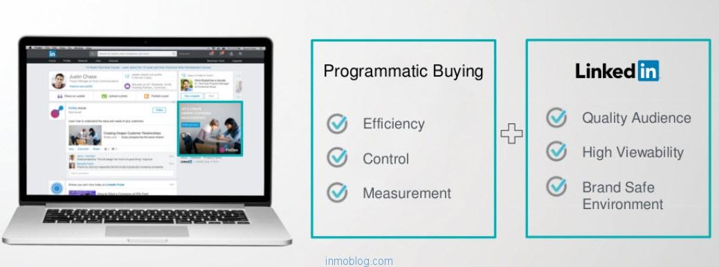 programmatic display linkedin