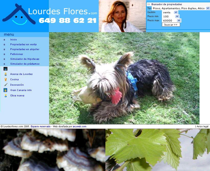 Lourdes Flores Inmobiliarias